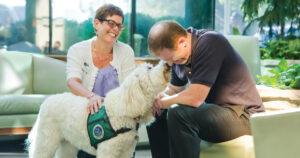Терапия животными в Испании